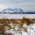 Mt Illimani In Winter by James Brunker