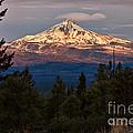 Mt. Jefferson At Dawn by Stuart Gordon