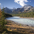Mt Kerkeslin And Athabaska River Jasper by Matthias  Breiter