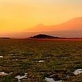 Mt Kilimanjaro by Amanda Stadther