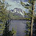 1m9226-mt. Moran And Jenny Lake, Wy by Ed  Cooper Photography