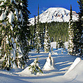 Mt Rainier At Reflection Lakes In Winter by Inge Johnsson