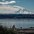 Mt Rainier by Joan Carroll
