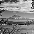Mt. Rainier Over The Port Of Tacoma by Tikvah's Hope