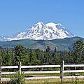 Mt. Rainier by Shanna Hyatt