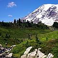 Mt. Ranier by David Lucero