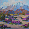 Mt. San Jacinto And Verbena by Diane McClary