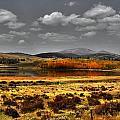 Mt. Silverhills In Silver by Lanita Williams