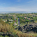 Mt. Soledad - View To The South by Susan McMenamin