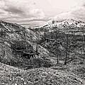 Mt. St. Helen's by Anna Burdette