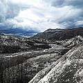 Mt. St. Helen's National Park 3 by Anna Burdette
