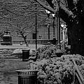 Mt Vernon Place--park by Harold E McCray