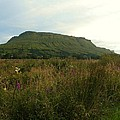 Muckrum Leitrim County Leitrim Ireland by Louise Macarthur Art and Photography