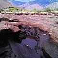 Mud Canyon by Chris Tarpening