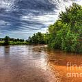 Muddy Waters by Alan Look