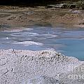 Mudpots Area I I I by Sharon Elliott