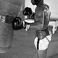 Ali Punching Bag by Retro Images Archive