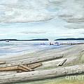 Mukilteo Beach by Dennis Fisk