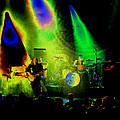 Mule #7 Enhanced Image In Cosmicolor by Ben Upham