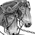 Mules - Beast Of Burden - B And W by Jan Dappen