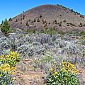Mule's Ears And Schonchin Butte In Lava Beds Nmon-ca by Ruth Hager