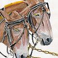 Mules - Two - Beast Of Burden by Jan Dappen