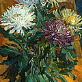 Multi Colored Chrysanthemums by Juliya Zhukova