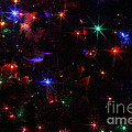 Multi Lights Decorations by Connie Mueller