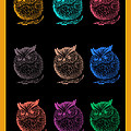 Multicolor Owl by Blue Designs