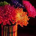 Multicolored Chrysanthemums In Paint Can On Chest Of Drawers Int by Jim Corwin
