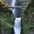 Multnomah Falls by Athena Mckinzie