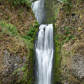 Multnomah Falls by Greg Nyquist