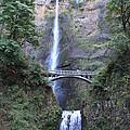 Multnomah Falls by Jennifer Ansier