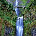 Multnomah Falls by John Absher