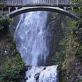 Multnomah Falls by Pat McGrath Avery