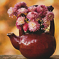 Mums In A Teapot Still Life by Peggy Collins