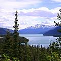 Muncho Lake View by Edie Ann Mendenhall