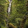 Munson Creek Falls by Lee Kirchhevel