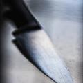 Murder In The Shadows by Margie Hurwich