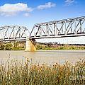 Murray Bridge by Tim Hester