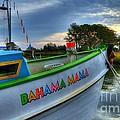 Murrells Inlet Cruise by Mel Steinhauer