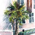 Museum Palm by Julie Morrison