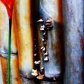 Mushroom On Bamboo 2 by Lyle Barker