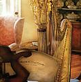 Music - Harp - The Harp by Mike Savad