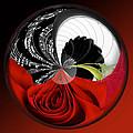 Music Orbit by Phyllis Denton