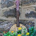 Musical Garden by Bill Cannon