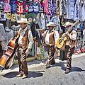 Musicians La Bufadora by Hugh Smith
