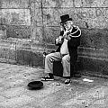 Musicman by Eugenio Moya