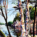 Muskoka Reflections by Hanne Lore Koehler