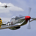 Mustang And Thunderbolt by Craig Purdie